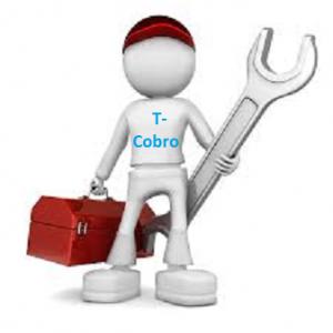 Soporte y Mantenimiento Sistemas Automáticos T-Cobro